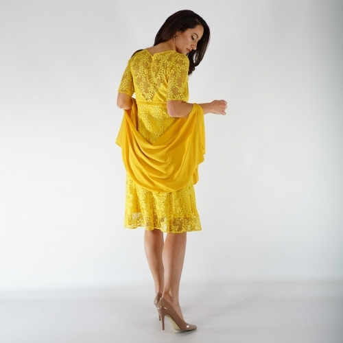 Formal Lace Yellow Lady Dress With Short Sleeve and Yellow Chiffon Scarf 20724